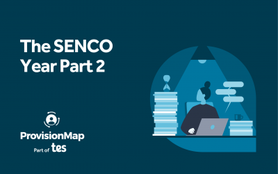 The SENCO Year Part 2: Using Tes  – Provision Map
